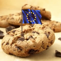 EU Cookie Law – Template Privacy Wording