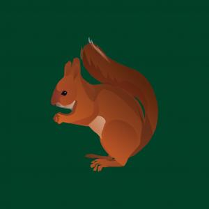 skewing fold app icon